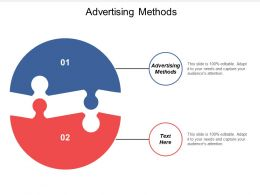 Advertising Methods Ppt Powerpoint Presentation Gallery Visual Aids Cpb