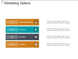 Advertising Options Ppt Powerpoint Presentation Diagram Templates Cpb