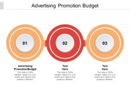 Advertising Promotion Budget Ppt Powerpoint Presentation Portfolio Grid Cpb
