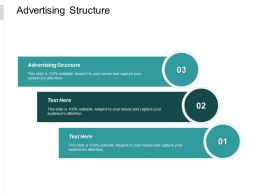 Advertising Structure Ppt Powerpoint Presentation Pictures Graphics Tutorials Cpb