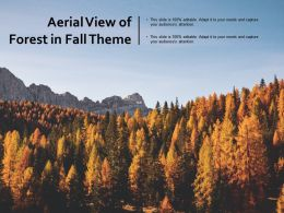 Aerial View Of Forest In Fall Theme