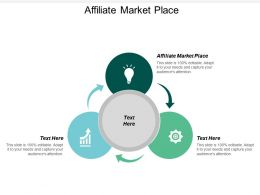 Affiliate Market Place Ppt Powerpoint Presentation File Backgrounds Cpb