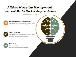 Affiliate Marketing Management Lencioni Model Market Segmentation Cpb