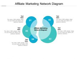 Affiliate Marketing Network Diagram Ppt Powerpoint Presentation Icon Show Cpb