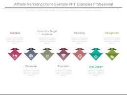 Affiliate Marketing Online Example Ppt Examples Professional