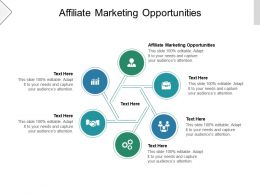 Affiliate Marketing Opportunities Ppt Powerpoint Presentation Show Deck Cpb