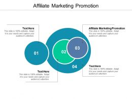 Affiliate Marketing Promotion Ppt Powerpoint Presentation Professional Pictures Cpb