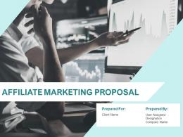 Affiliate Marketing Proposal Powerpoint Presentation Slides