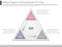 Affiliate Programs Working Sample Ppt Files
