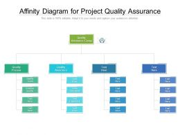 Affinity Diagram For Project Quality Assurance