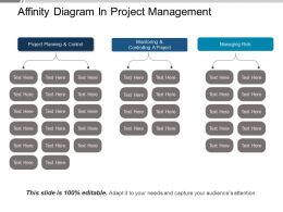 Affinity Diagram In Project Management Ppt Example File