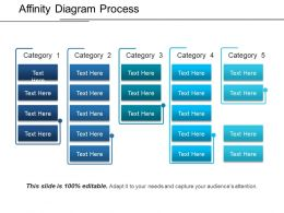 Affinity Diagram Process Ppt Examples