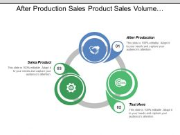 After Production Sales Product Sales Volume Customer Market