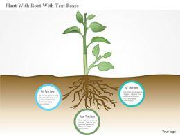 Ag Plant With Root With Text Boxes Powerpoint Template