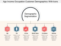 Age Income Occupation Customer Demographics With Icons
