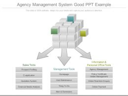Agency Management System Good Ppt Example