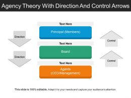 Agency Theory With Direction And Control Arrows
