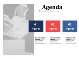 Agenda Advertising Channels Ppt Infographic Template Background Designs