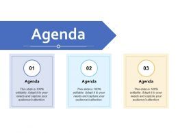 Agenda Audiences Attention J13 Ppt Powerpoint Presentation Ideas Show