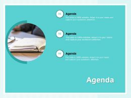 Agenda Audiences Attention Ppt Powerpoint Presentation Templates
