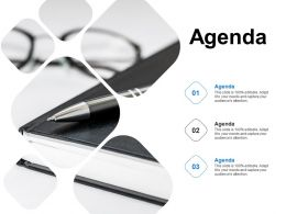 Agenda Business Ppt Powerpoint Presentation Infographics