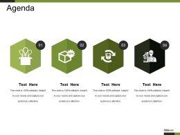 Agenda Example Ppt Presentation