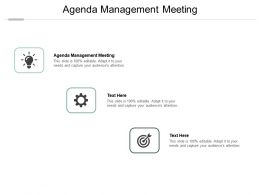 Agenda Management Meeting Ppt Powerpoint Presentation Pictures Vector Cpb