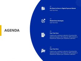 Agenda Market Entry Strategies Ppt Powerpoint Presentation Pictures Infographic Template