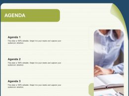 Agenda Needs And Capture N173 Powerpoint Presentation Layout Ideas