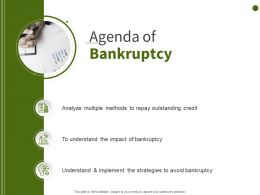Agenda Of Bankruptcy Avoid Repay Ppt Powerpoint Presentation Ideas Icons