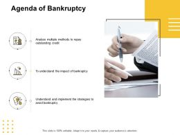 Agenda Of Bankruptcy Outstanding Credit Ppt Powerpoint Presentation Visual Aids Portfolio