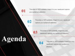 Agenda Ppt Background Graphics