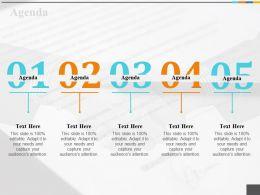Agenda Ppt Summary Slide