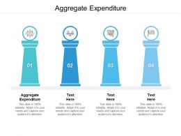 Aggregate Expenditure Ppt Powerpoint Presentation Professional Examples Cpb