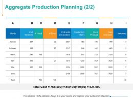 Aggregate Production Planning Management Ppt Powerpoint Presentation Styles Professional