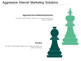 Aggressive Internet Marketing Solutions Ppt Powerpoint Presentation File Objects Cpb