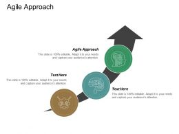 Agile Approach Ppt Powerpoint Presentation Ideas Design Templates Cpb