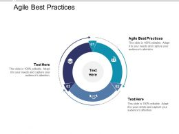 Agile Best Practices Ppt Powerpoint Presentation Ideas Graphic Tips Cpb