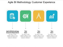 Agile BI Methodology Customer Experience Ppt Powerpoint Presentation Portfolio Diagrams Cpb