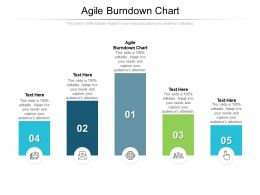 Agile Burndown Chart Ppt Powerpoint Presentation Professional Example Cpb