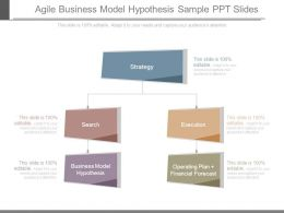 Agile Business Model Hypothesis Sample Ppt Slides