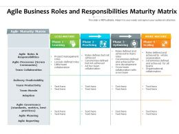 Agile Business Roles And Responsibilities Maturity Matrix