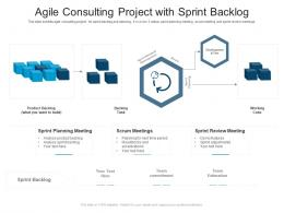 Agile Consulting Project With Sprint Backlog