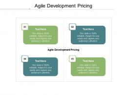 Agile Development Pricing Ppt Powerpoint Presentation Slides Picture Cpb