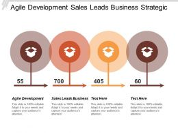 Agile Development Sales Leads Business Strategic Goal Decision Analysis Cpb