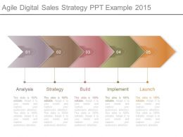 Agile Digital Sales Strategy Ppt Example 2015
