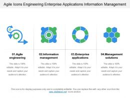 Agile Icons Engineering Enterprise Applications Information Management