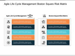 Agile Life Cycle Management Boston Square Risk Matrix Cpb