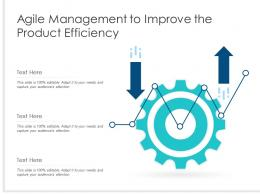 Agile Management To Improve The Product Efficiency