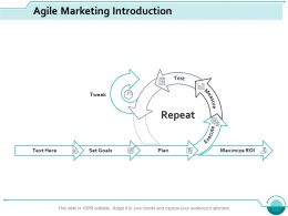 Agile Marketing Introduction Execute Ppt Styles Inspiration